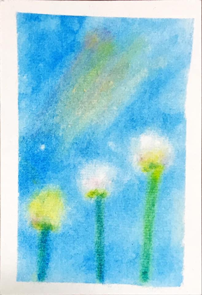 パステルアート子どもの現場。8才女の子の作品です。青空に気持ちよく飛んでいく綿毛を描きました。